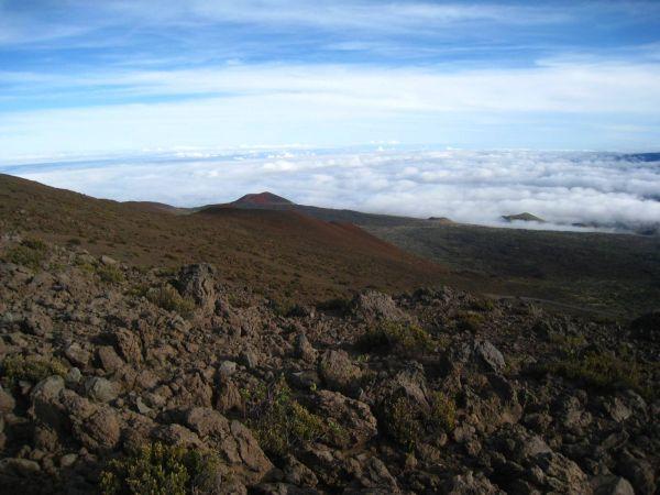 Everest Mauna Kea
