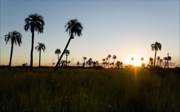 desert picture - Jeremy Calvo