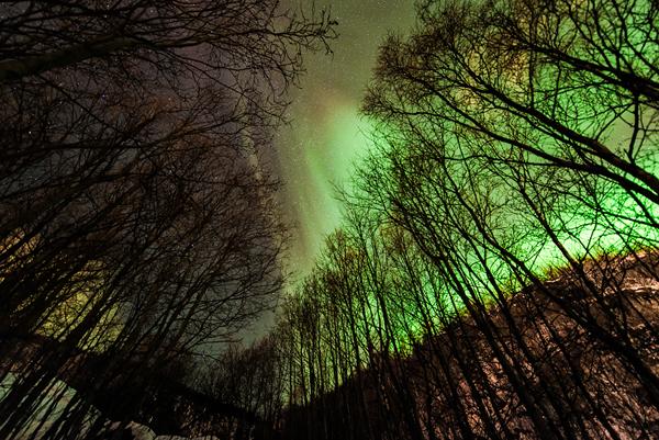 photo aurore boréale Tommy Richardsen