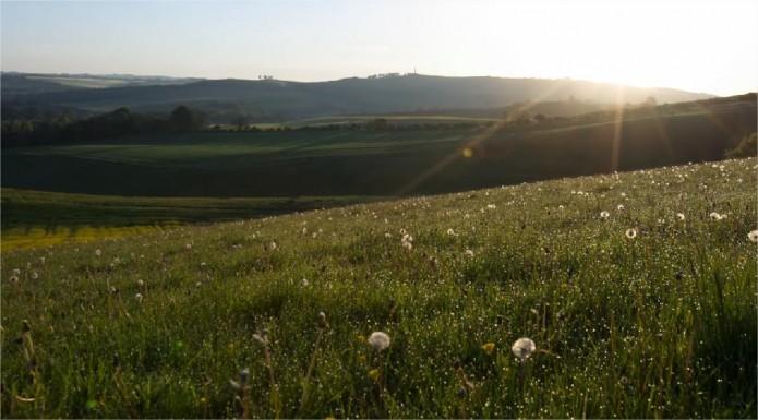 paysage ensoleillé