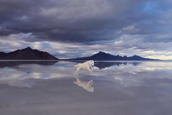 John & Wolf - Bonneville Salt Flats, UT