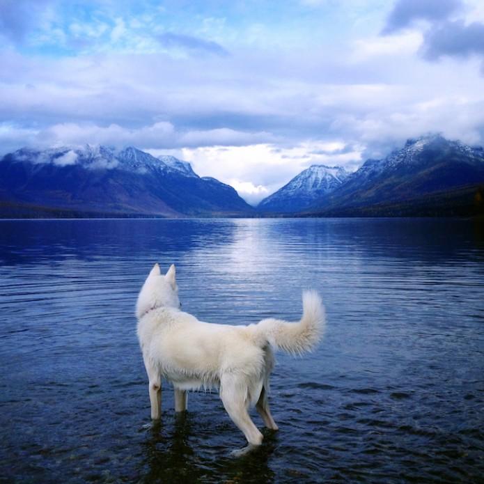 John & Wolf - Glacier National Park, Montana