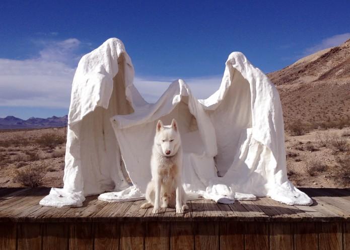 John & Wolf - Rhyolite, NV