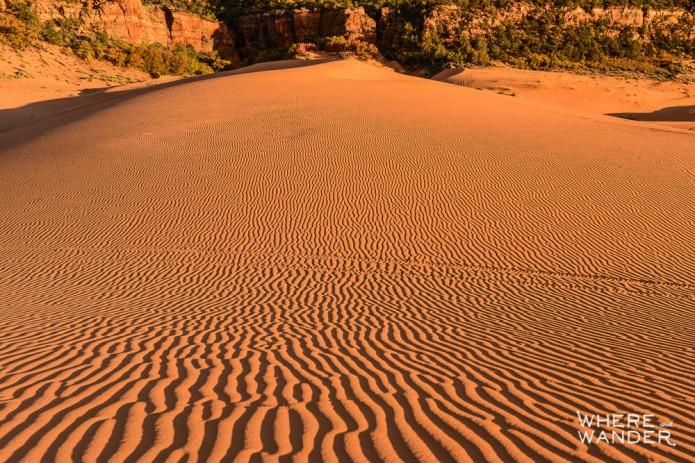 Kien Lam_Coral Pink Sand Dunes