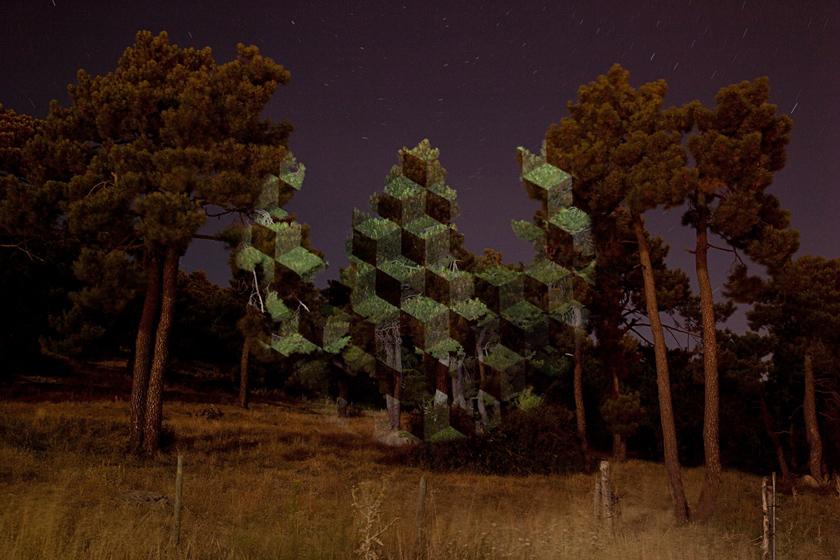 Javier Riera nature et géométrie