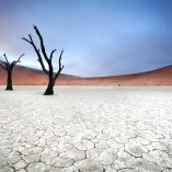 Désert de sel, salar, Sossusvlei, Namibie. Namibia's most spectacular landscape