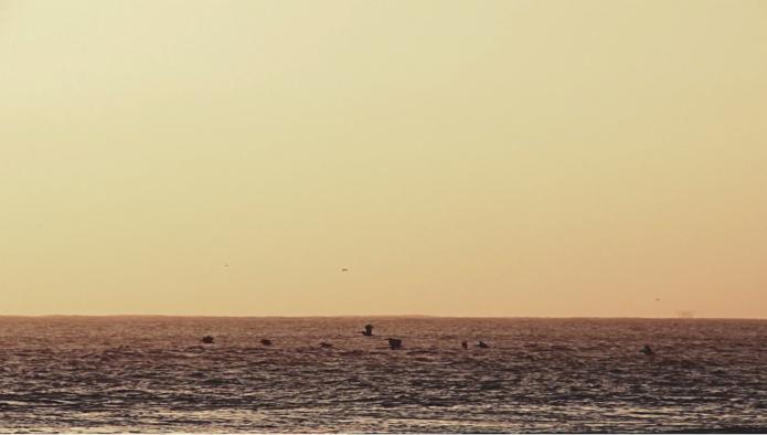 Aventure péruvienne ocean