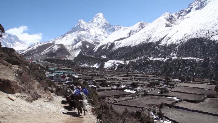 Népal trek