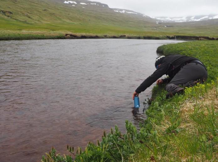 Hornstrandir Islande Jean François Lurol