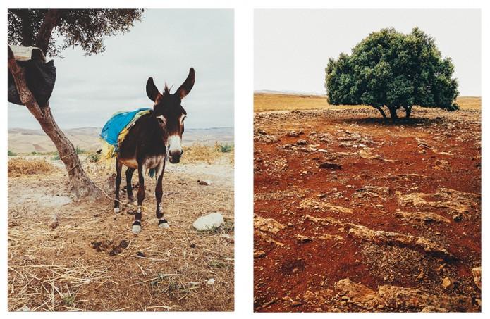 Road trip marocain - visualspectrum.ch