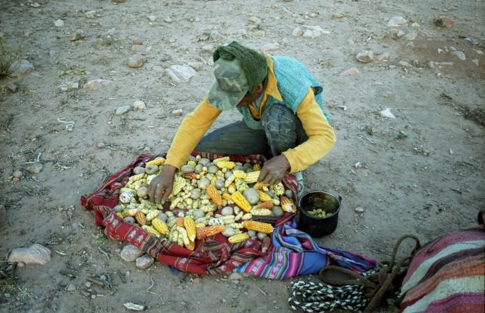 Altiplano bolivien vu par Stephane de Rouville
