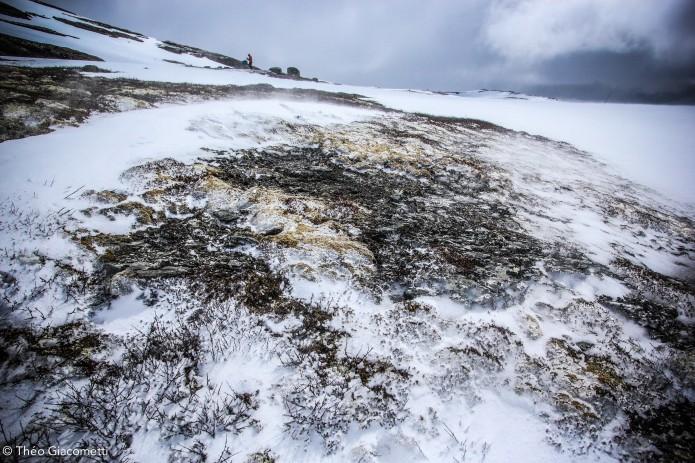 Norvège immensités glacées